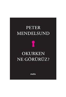 Okurken Ne Görürüz-Peter Mendelsund