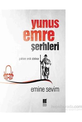 Yunus Emre Şerhleri - Çıktım Erik Dalına-Emine Sevim