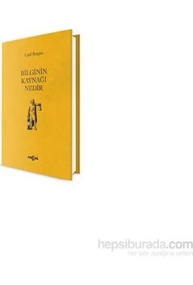 Bilginin Kaynağı Nedir-Lütfi Bergen