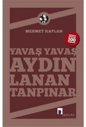 Yavaş Yavaş Aydınlanan Tanpınar - Mehmet Kaplan