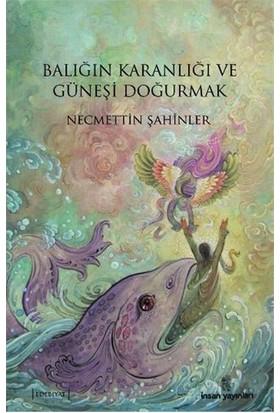 Balığın Karanlığı Ve Güneşi Doğurmak-Necmettin Şahinler
