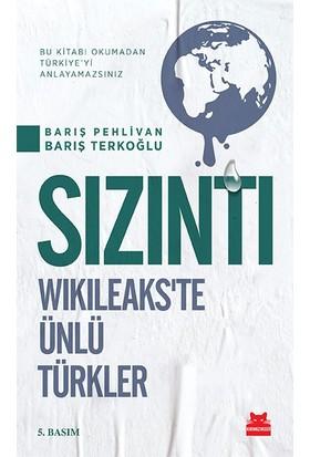 Sızıntı - Wikileaks'te Ünlü Türkler - Barış Pehlivan
