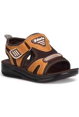 Polaris 71.508208.P Kahverengi Erkek Çocuk Basic Sandalet