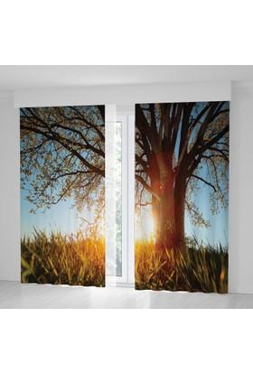 Positivehome Bahar Gün Doğumu Ağaç Güneş Huzur Manzaralı Fon Perde