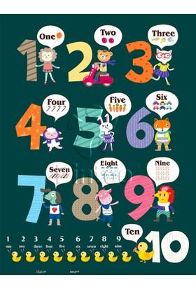 Pintoo Puzzle Saymayı Öğreniyorum 48 Parça Plastik Çocuk Puzzle
