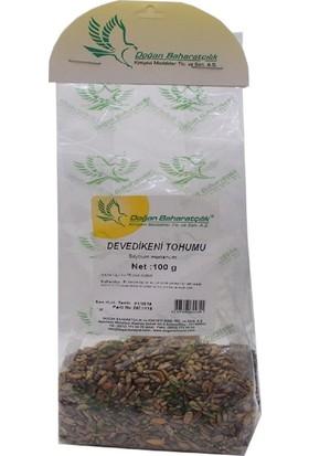 Doğan Baharat Devedikeni Tohumu 100 gr Pkt