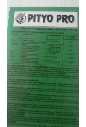 Doğal Kimya Pıtyo Pro 160 Gr