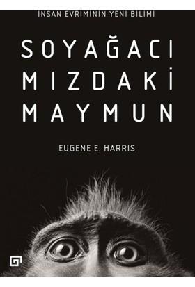 Soyağacımızdaki Maymun:İnsan Evriminin Yeni Bilimi