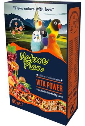 Nature Plan Vita Power Bağışıklık Desteği 50 G