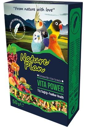 Nature Plan Vita Power Tüy Sağlığı 50 G