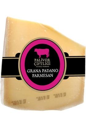 Palivor Çiftliği İtalya Grano Padano Parmesan 100 gr