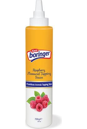 Kent Boringer franbuaz Dondurma Sosu 750 Gr
