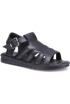 Flexall 111 M 1626 Siyah Erkek Sandalet