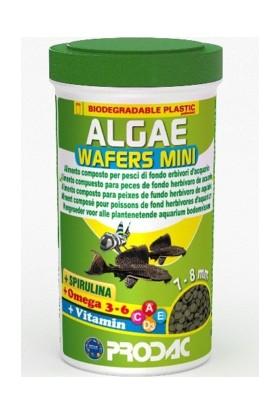 Prodac Algae Wafers Mini Dip Balıkları İçin Bitkisel Tablet Yem 250 Ml