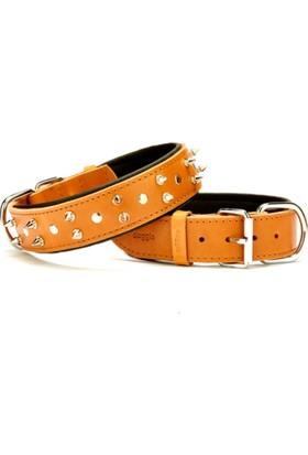 Doggie Yumuşak Dokulu Çivili Köpek Boyun Tasması Kamel Sbt-4012