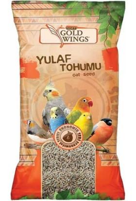 Gold Wings Yulaf 300 Gr