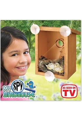 Wildlebend Gözlemlenebilir Kuş Yuvası Spy Bird House