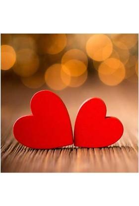 İki Kalp Bulaşık Makinesi Sticker