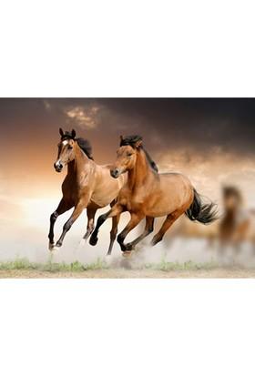 Koşan Atlar Notebook Sticker
