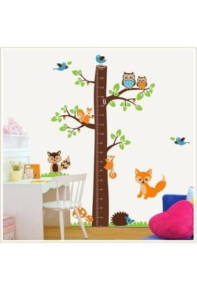 Çocuk Odası Dekoru Boy ve Gelişim Ölçer Büyük Boy Ağaç Sincap ve Baykuşlar PVC Duvar Sticker
