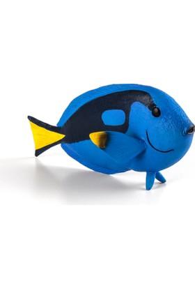 Animal Planet Mavi Cerrah Balığı - Medium