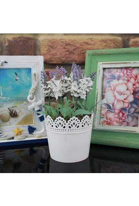 Dantelli Saksıda Beyaz Lavanta Yapay Çiçek