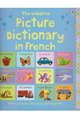 Picture Dictionary İn French (Picture Dictionaries)