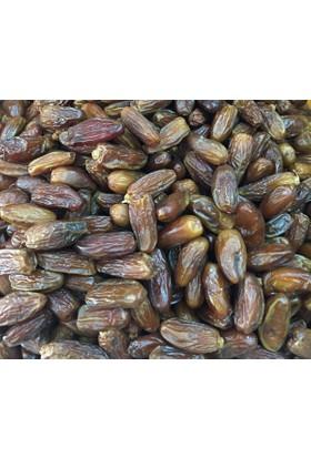 Aktarzane Tunus Ballı İftarlık Hurma 500 gr