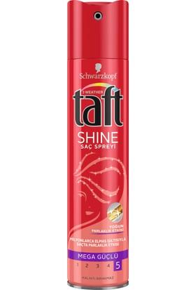 Taft Sprey 10 Karat Glanz 250ml