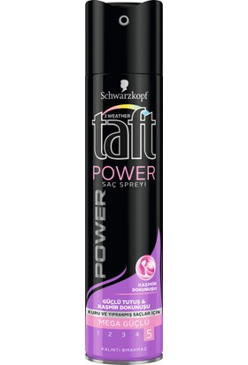 Taft Power Kaşmir Sprey 250 ml