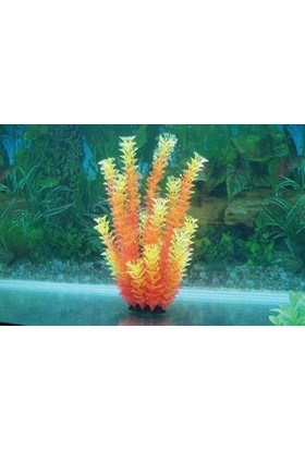 Langhu Plastik Bitki 32-35 Cm