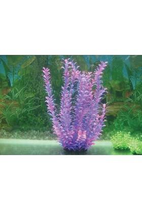 Langhu Plastik Bitki 50-52 Cm