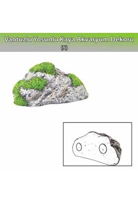 Dophin Yosunlu Kaya Akvaryum Dekoru S