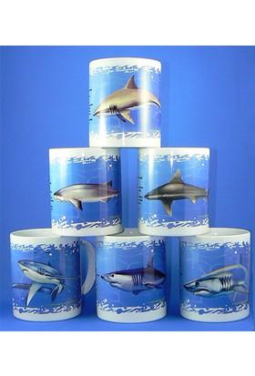 Kahve Çay Kupası Köpekbalığı Serisi 6Lı