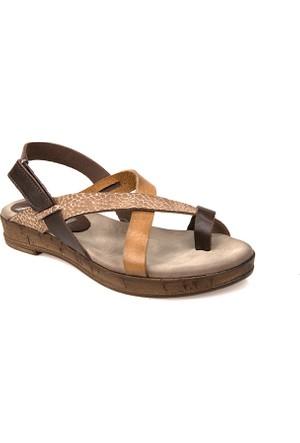 Ziya Kadın Hakiki Deri Sandalet 7123 5220 Kahverengi