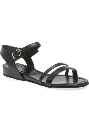 Frau Nero 89 L1 Parma Kadın Sandalet Siyah