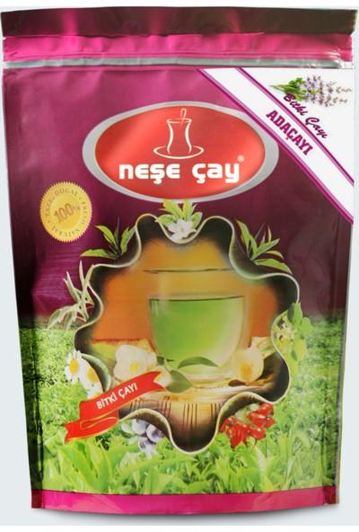 Neşe Çay Adaçayı 100 gr