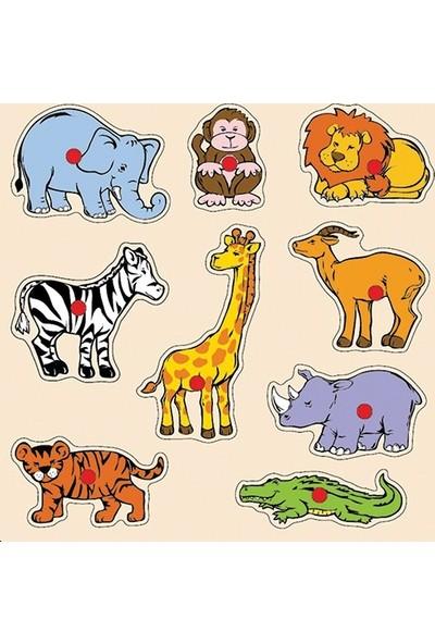 Eco Shop Safari Hayvanları