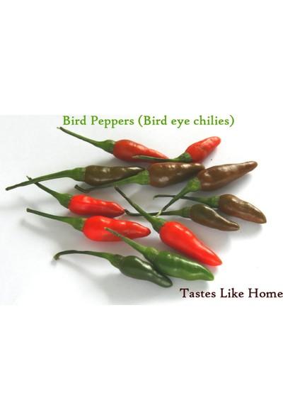 Tohhum Acı Kuş Biberi(Bırd Pepper)10+Tohum+Saksı+Toprak [Tohhum Ev Bahçe]