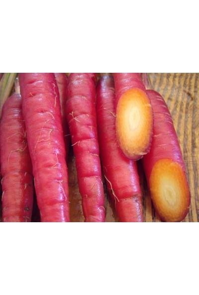 Tohhum Kırmızı Havuç 150+ Adet Tohum [Tohhum Ev Bahçe]