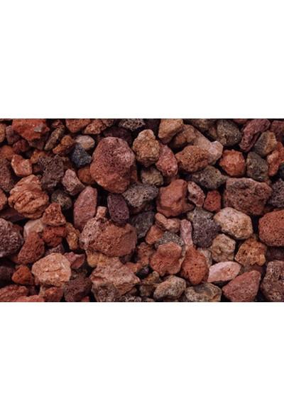 Tohhum Kırmızı Ponza Lav Taşı 3 Litre [Tohhum Ev Bahçe]