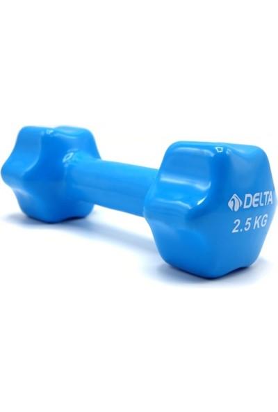 Delta 2,5 Kg x 1 Adet Deluxe Pvc Kaplama Mavi Demir Dambıl