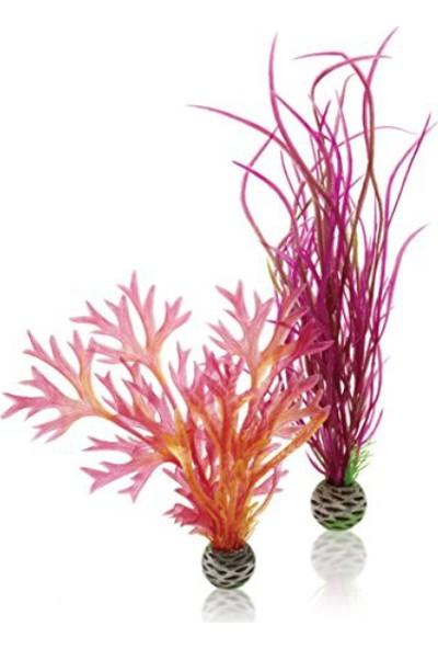 Biorb Plastik Bitki 25 Cm Kırmızı Mor İkili Pl04