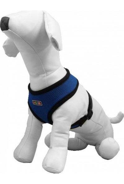 Yumuşak Dokulu Köpek Göğüs Tasması Medium Mavi