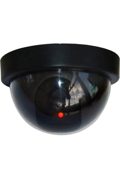 Wildlebend Caydırıcı Dome Güvenlik Kamerası