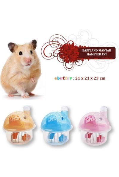 Wildlebend Eastland Hamster Evi