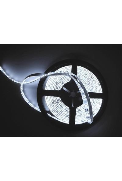 Wildlebend LED Şerit Aydınlatma / Dekorasyon - Dış Mekan Silikonlu (5 Metre)