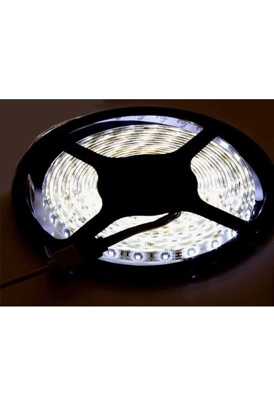 Wildlebend LED Şerit Aydınlatma / Dekorasyon - İç Mekan (5 Metre)