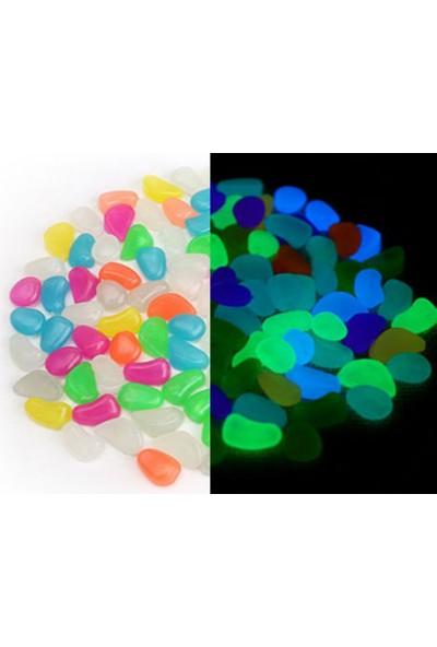 Wildlebend Renkli Fosforlu Çakıl Taşları 5 Renk (50 Adet)