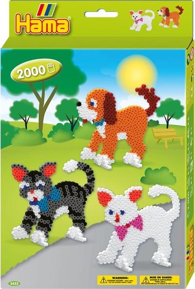 Hama Boncuk Kutu - Kediler ve Köpek